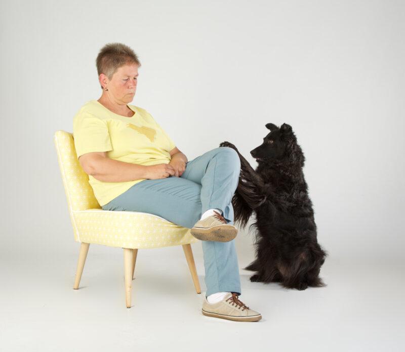 1 Diabetiker Warnhund zeigt Hypo durch Kratzen an Foto Tina King die Fotografin