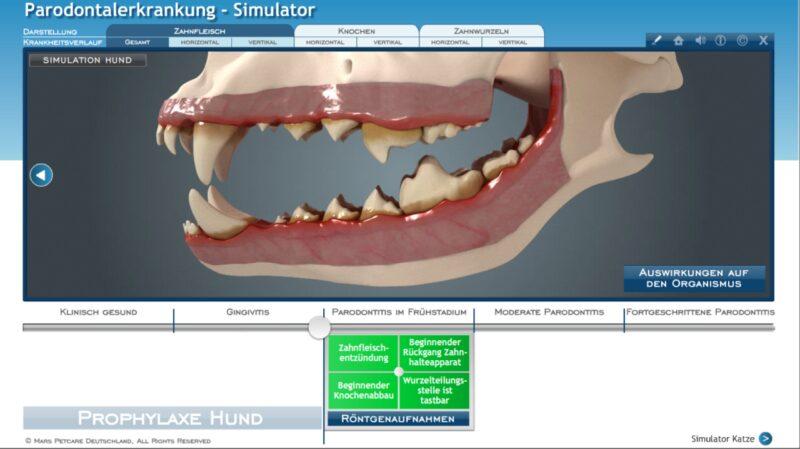 Mars4 Simulator Beratungsbereich