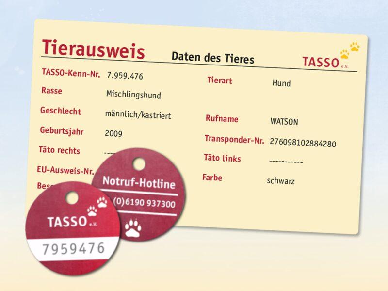 TASSO prinzip tasso plakette und tasso tierausweis