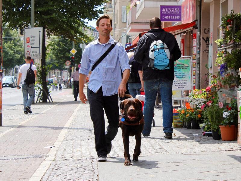 Blindenfuhrhundtraining 5