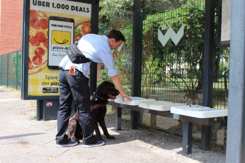 Blindenfuhrhundtraining 3