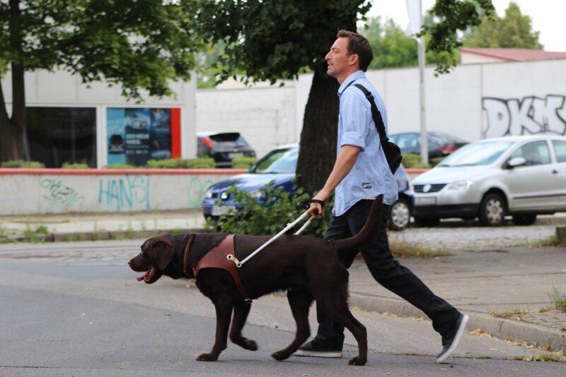 Blindenfuhrhundtraining 2
