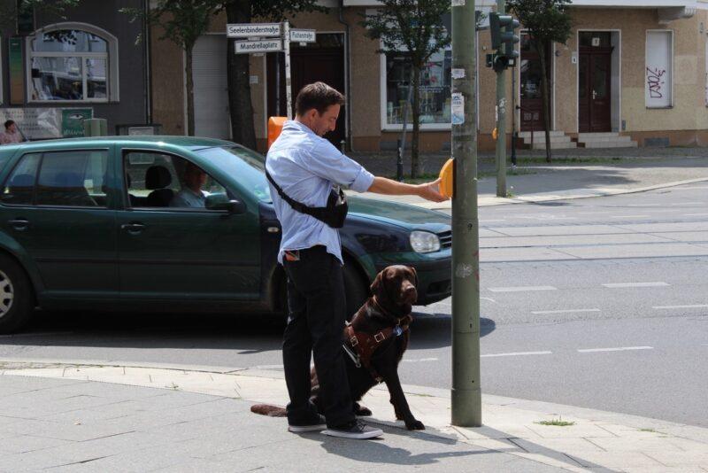 Blindenfuhrhundtraining 4