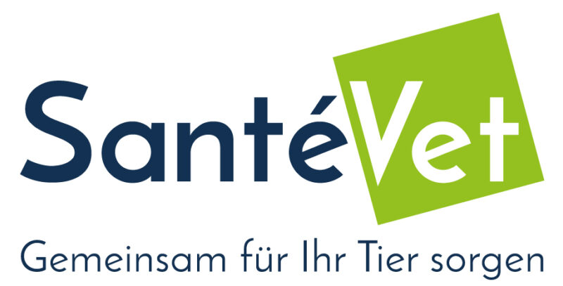 Logo SV DE