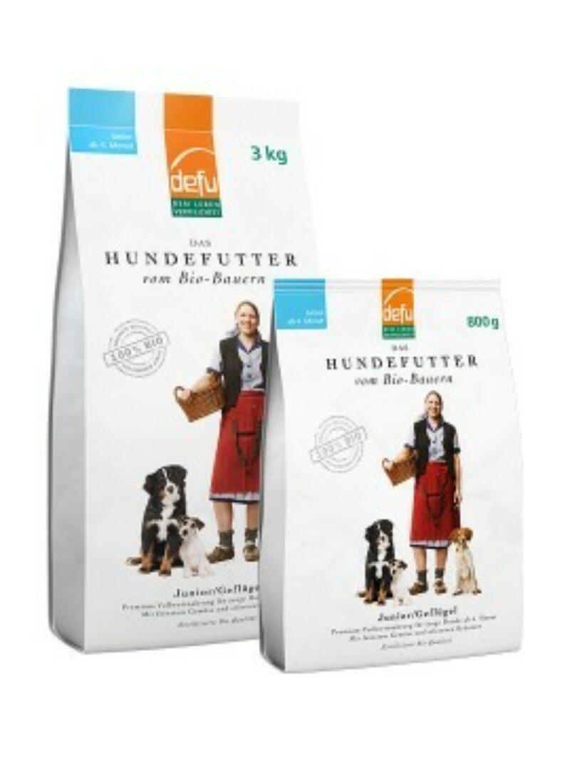 Hund T Junior 540X720 1