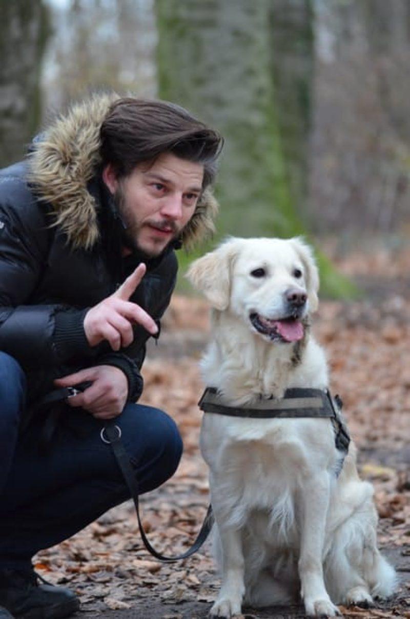 Leisure Wildlife Photography Pet Photography Dog 159557
