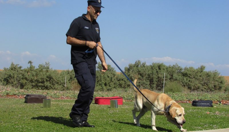 Police Dog 1761874 1920